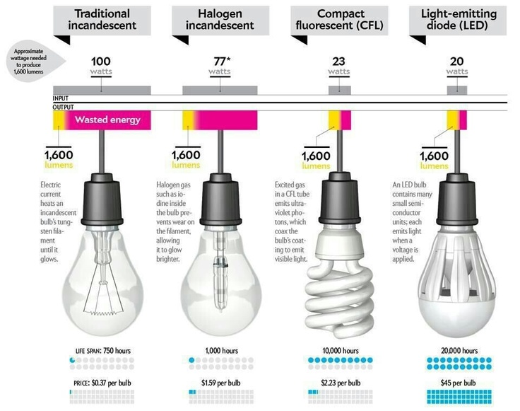 Light Bulb Energy Use Guide